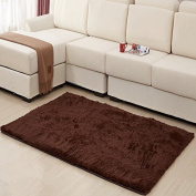 MBIGM Home Decorator Modern Shag Area Rugs Super Soft Solid Living Room Carpet Bedroom Washable Rug and Carpets, 0.6m X 1.2m [80 * 120cm] Coffee