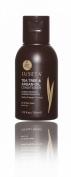 Luseta Beauty Tea Tree & Argan Oil Shampoo travel size 50ml