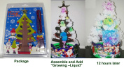 Magic Christmas-tree. Holiday Magic - Grow Right Before Your Eyes