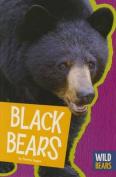 Black Bears (Wild Bears)