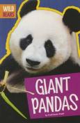Giant Pandas (Wild Bears)