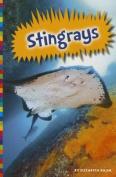 Stingrays (Poisonous Animals)
