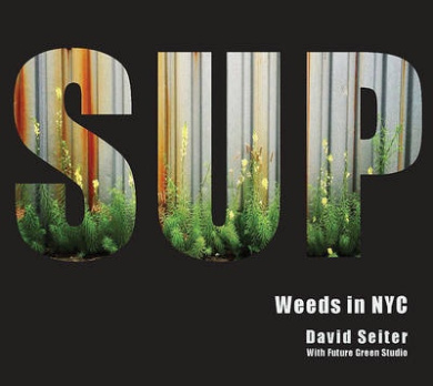Spontaneous Urban Plants: Weeds in NYC