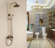 Antique Brass Tub Shower Faucet with 20cm Shower Head + Hand Shower