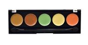 "City Colour Perfecting Palette ""Medium to Dark"""