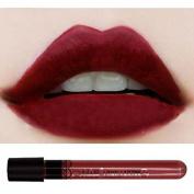 Waterproof lipgloss velvet matte Long Wear lipstick