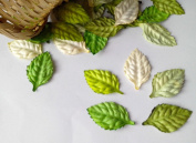 100 Mix Rose Leaf Mulberry Paper Craft Scrapbooking 2.50 cm