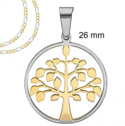 """Two tone Gold and Silver Round Tree of Life pendant Necklace with Frame - 26 MM = 1 Inch Stainless Steel + 18"""" or 20"""" Two Tone Chain Figaro Necklace"""