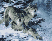 Wooden Framed Paint By Number Animals No Mixing / No Blending Linen Canvas DIY Painting - Snow Wolf