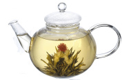 Vivoice Ultra Clear Heat Resistant Glass Teapot & Infuser with 250 ml Capacity