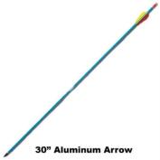 NEW 30 in Aluminium Arrow