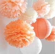 HoHoDeal 8 Pcs Mixed Peach Ivory Orange Tissue Paper Pom Poms Pompoms and Paper Lantern Wedding Birthday Party Baby Girl Room Decoration