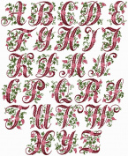 ABC Machine Embroidery Designs Set - Curly Berries Font Embroidery Designs 4x4 Hoop - CD
