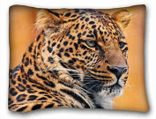 Custom Animal Pillowcase Cushion Cover Design Standard Size 50cm x 70cm One Sides suitable for Full-bed