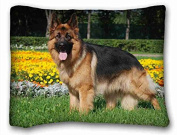 Custom Cotton & Polyester Soft Animal Soft Pillow Case Cover 20*70cm (One Sides)Zippered Pillowcase suitable for Full-bed