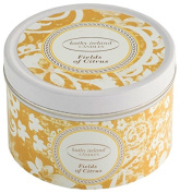 Kathy Ireland Candles Gallery Tin Candle, Fields of Citrus