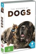 The Wonder of Dogs [Region 4]