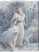 Gothic Fantasy Art Anne Stokes Winter Guardian Canvas Print