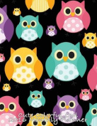 Cute Colorful Owl 2016 Monthly Planner