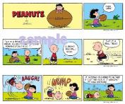 Peanuts Charlie Brown Deigner Print Edible Cake Border