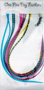 Feather Hair Extensions 10 Pack + Rings / Loop