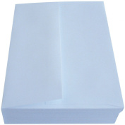 Leader Paper Products Leader A2 Peggable Envelopes (50 Pack), 11cm by 15cm , White