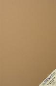 100 Brown Kraft Fibre 80# Cover Paper Sheets - 28cm X 43cm (28cm X 43cm ) Tabloid|Ledger|Booklet Size - Rich Earthy Colour with Natural Fibres - 36kg/pound Cardstock - Smooth Finish