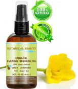 Organic Evening Primrose Oil. 100% Pure / Natural / Undiluted / Unrefined /Certified Organic/ Cold Pressed Carrier Oil. Rich Antioxidant To Rejuvenate And Moisturise The Skin And Hair. 2 Fl.oz - 60ml. By Botanical Beauty