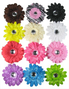 Ship From USA--HipGirl Boutique Girls Hair Flower Clips Set
