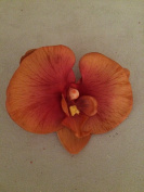 Phalaenopsis Orchid Artificial Flower Hair Clip/Pin Brooch
