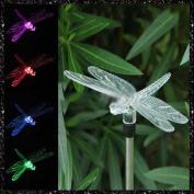 MMRM Dragonfly Design LED Path Light Colour Changing Solar Powdered Garden Yard Lawn Xmas Lighting Decoration