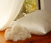 2 Kapok Organic Cotton Pillows Standard Zip Off Outer