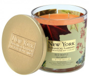 New York Botanical Garden by Chesapeake Bay Candle Decorative 2-Wick Jar with Lid, Red Maple