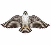 Peregrine Falcon Wing Flapper 140cm Kite Gayla