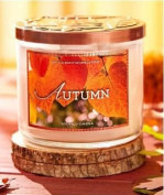 Bath & Body Works Autumn 3 Wick Scented Candle 430ml