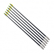 Archery Arrow Nocks Fletched Arrows Fibreglass for Hunting Practise Shaft Glass Fibre