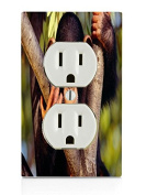Monkey Electrical Outlet Plate