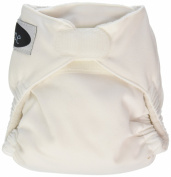 Imagine Baby Products Newborn Stay Dry All-In-One Hook and Loop Cloth Nappy, Snow