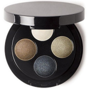 Full On Smokey Eye With a Twist Shadow Palette 3 Goes From Day To Night in This Seasons Must Have Most Eye Catching Trends