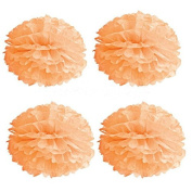 Saitec ® Pack of 10pcs 25cm Peach Colour Tissue Paper Pom Poms Pompoms Flower Balls For Wedding Birthday Party Decoration Baby Shower Favours