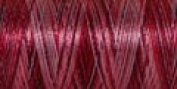 Sulky Of America 60wt Variegated Polylite Thread, 1650 yd, Strawberry Shortcake