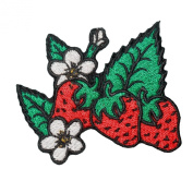 Strawberry With Green Leafs Embroidered Decorative Patch