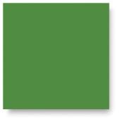 Mayco Stroke & Coat Wonderglaze Non-Toxic Glaze, 1 pt Bottle, Green Thumb