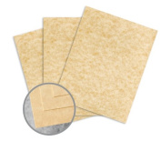 Skytone Champagne Paper - 8 1/2 x 11 in 27kg Text Vellum 30% Recycled 500 per Ream