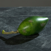 papaya 20 cm artificial fruit by DPI