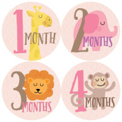 Monthly Baby Stickers, Zoo, Jungle, Baby Gift, Month Stickers