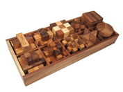 10 of 3D Wood Puzzles Brain Teasers Game in Wooden Box Set