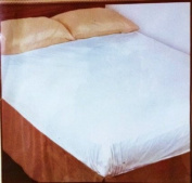 Fitted Queen Mattress Cover