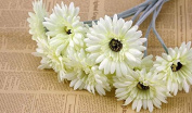 A Set Of 3 Highly Artificial Silk Cloth Material Flower Barberton Daisy/ Sun Flower For Home Decoration , 11 Colours Available