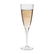 Abbott Collection Word Champagne Flute, 24cm